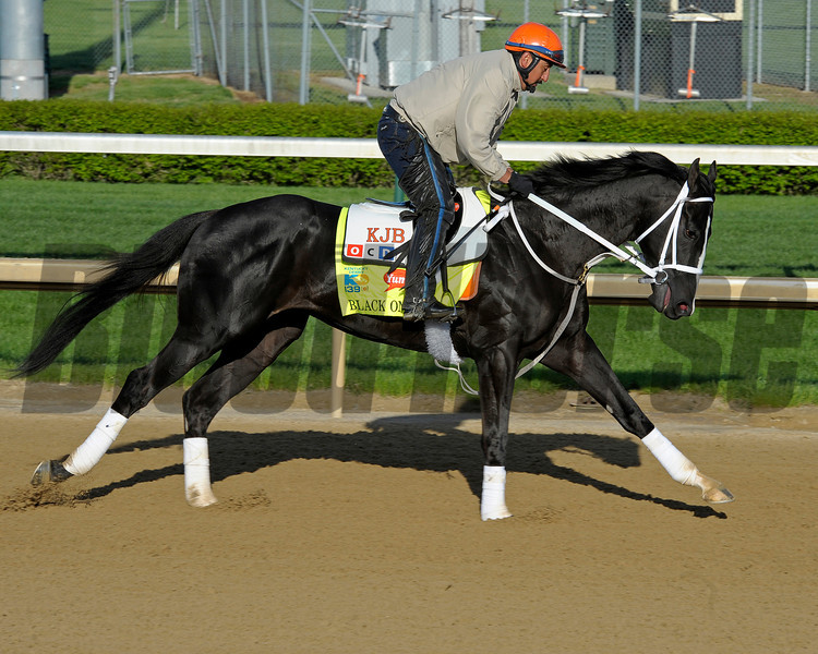 Caption: Black Onyx<br /> works and scenes at Churchill Downs near Louisville, Ky. on April 26, 2013, during Kentucky Derby and Kentucky Oaks week.<br /> 1Works4_26_13 image775<br /> Photo by Anne M. Eberhardt