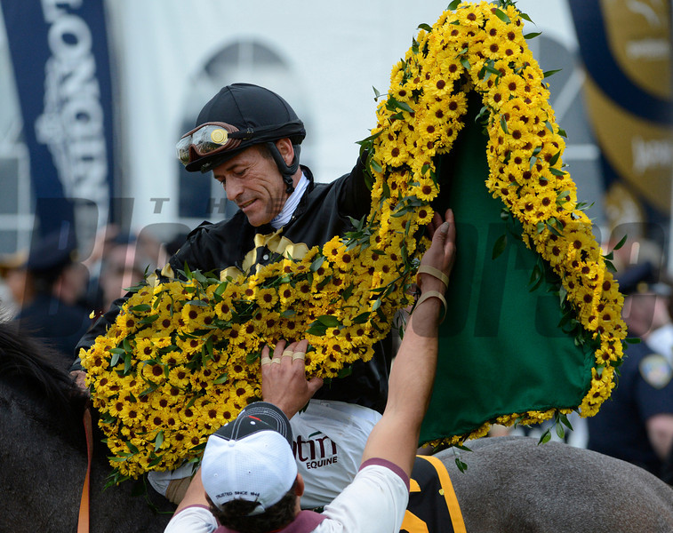 Oxbow with Gary Stevens aboard won the 138th running of the Preakness Stakes at Pimlico in Baltimore, Maryland May 18, 2013.  Photo by Skip Dickstein