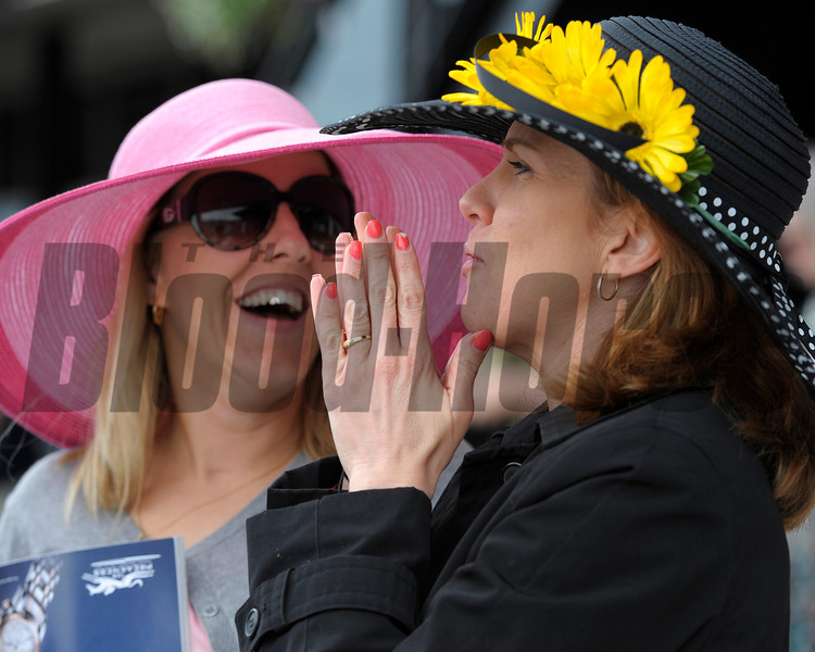 Caption: fans reacting to bets on a race<br /> Preakness week 2013 with Preakness horses and other going to the track at Pimlico on May 17, 2013, in Baltimore, Md.<br /> PREAKNESS Scenes2  image053<br /> Photo by Anne M. Eberhardt