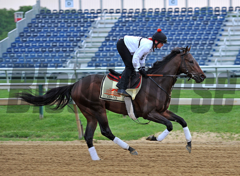 Kentucky Derby winner Orb at Pimlico early Thursday morning...<br /> © 2013 Rick Samuels/The Blood-Horse