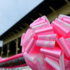 Pink ribbons line the facility in honor of cancer survivors and the cancer cause. 2013 Pimlico/Preakness<br /> Photo by Anne M. Eberhardt<br /> Preakness Thurs3 image 874