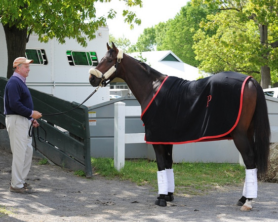 Orb prepares to leave Belmont Park for Pimlico.<br /> Coglianese Photos