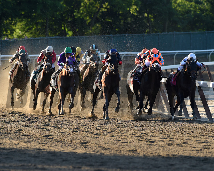 Tonalist wins the 2014 Belmont Stakes<br /> Jeffrey Snyder Photo