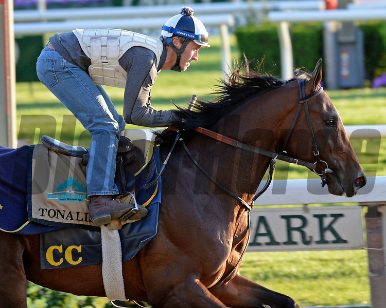 Caption: Tonalist<br /> Belmont and undercard works on June 2, 2014, at Belmont Park in Elmont, N.Y.<br /> MonOrigs1   image610<br /> Photo by Anne M. Eberhardt