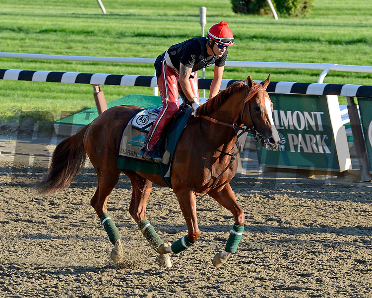 Caption: California Chrome<br /> Belmont and undercard works on June 6, 2014, at Belmont Park in Elmont, N.Y.<br /> FriOrigs1 image256<br /> Photo by Anne M. Eberhardt
