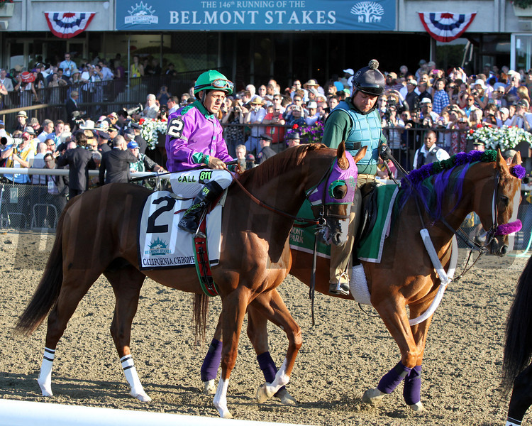 California Chrome Belmont Stakes Post Parade Chad B. Harmon