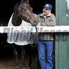 Ride On Curlin<br /> Belmont Park, May 29, 2014<br /> Coglianese Photos/Chelsea Durand