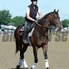Medal Count - Belmont Park, June 6, 2014.<br /> Coglianese Photos/Susie Raisher