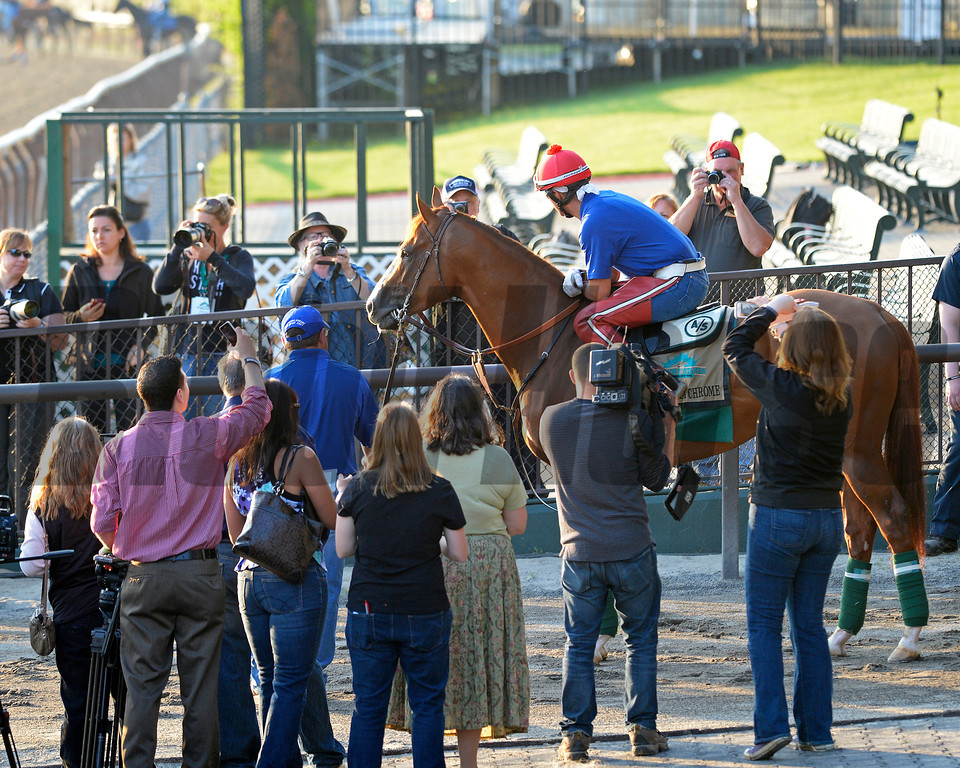 Caption: California Chrome with Willie Delgado waiting to go on the track with media and fans surrounding him.<br /> Belmont and undercard works on June 3, 2014, at Belmont Park in Elmont, N.Y.<br /> TuesOrigs1  image994<br /> Photo by Anne M. Eberhardt