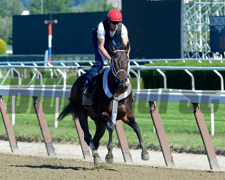 Caption: Ride On Curlin with Bryan Beccia works<br /> Belmont and undercard works on June 1, 2014, at Belmont Park in Elmont, N.Y.<br /> SunOrigs1   image489<br /> Photo by Anne M. Eberhardt