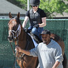 Palace Malice<br /> Coglianese Photos/Susie Raisher