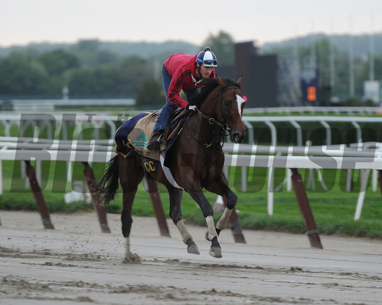 Tonalist<br /> Belmont Park, May 24, 2014<br /> Coglianese Photos/Susie Raisher