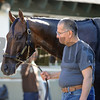 Matterhorn at Belmont Park 6/1/2014<br /> Coglianese Photos/Susie Raisher