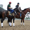 Ride on Curlin at Belmont Park, May 28, 2014<br /> Coglianese Photo/Lauren King