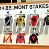 Belmont Stakes Draw