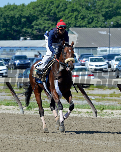 Caption: Wicked Strong works<br /> Belmont and undercard works on June 1, 2014, at Belmont Park in Elmont, N.Y.<br /> SunOrigs1   image543<br /> Photo by Anne M. Eberhardt