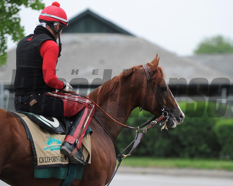 California Chrome at Belmont Park on May 28, 2014.<br /> Coglianese Photos/Lauren King
