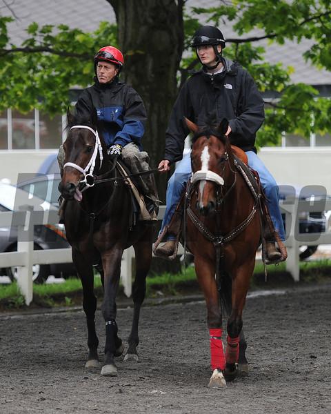 Ride On Curlin<br /> Belmont Park, May 24, 2014<br /> Coglianese Photos/Susie Raisher