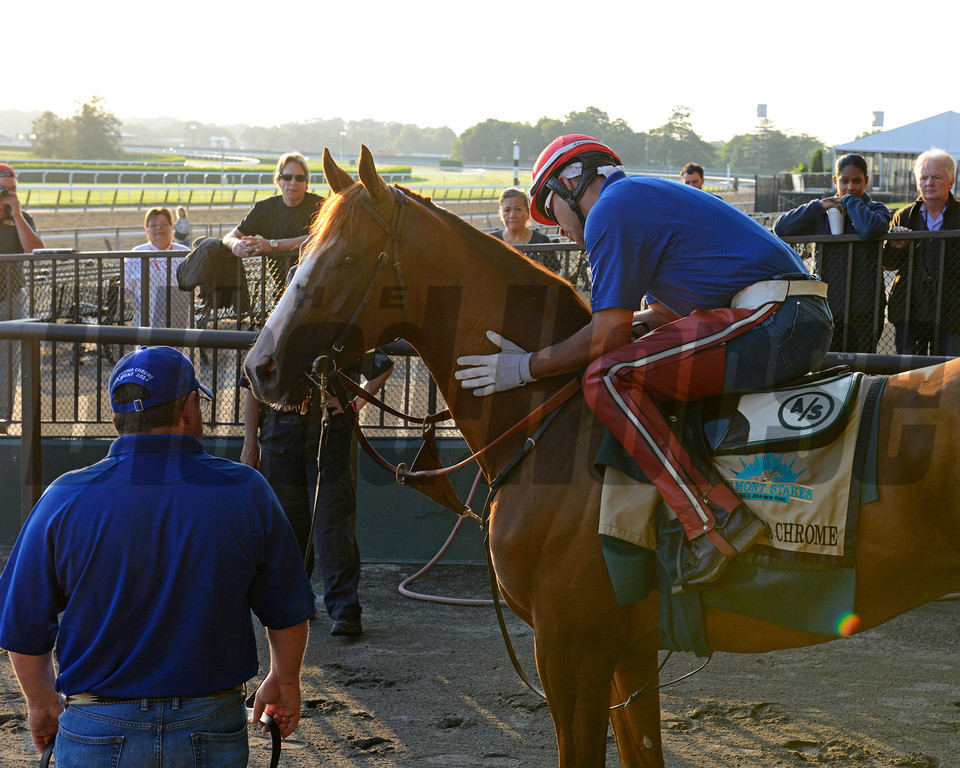 Caption: California Chrome with Willie Delgado waiting to go on the track with media and fans surrounding him. Trainer Dallas Stewart in background as well.<br /> Belmont and undercard works on June 3, 2014, at Belmont Park in Elmont, N.Y.<br /> TuesOrigs1  image994<br /> Photo by Anne M. Eberhardt