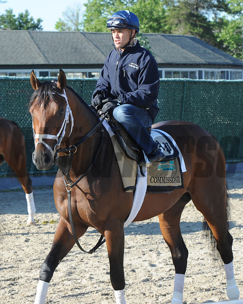 Commissioner at Belmont Park 6/1/2014<br /> Coglianese Photos/Susie Raisher