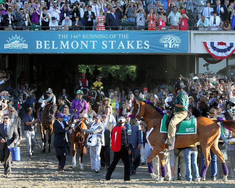 California Chrome Belmont Stakes Chad B. Harmon