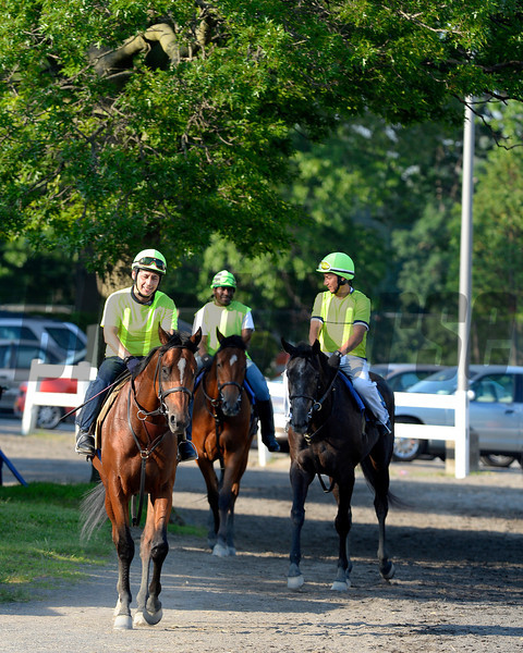 Caption: Kid Cruz returns to barn<br /> Belmont and undercard works on June 3, 2014, at Belmont Park in Elmont, N.Y.<br /> TuesOrigs1  image010<br /> Photo by Anne M. Eberhardt