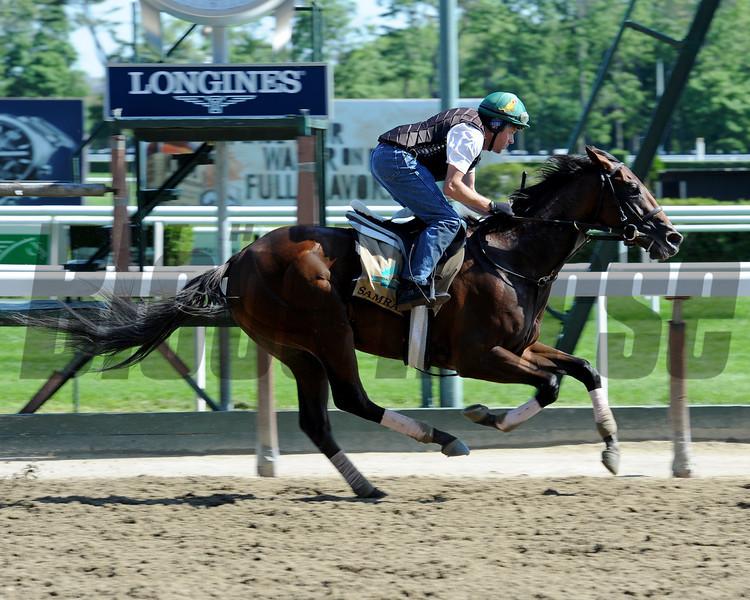 Samraat preps for the Belmont Stakes.<br /> Coglianese Photos/Chelsea Durand