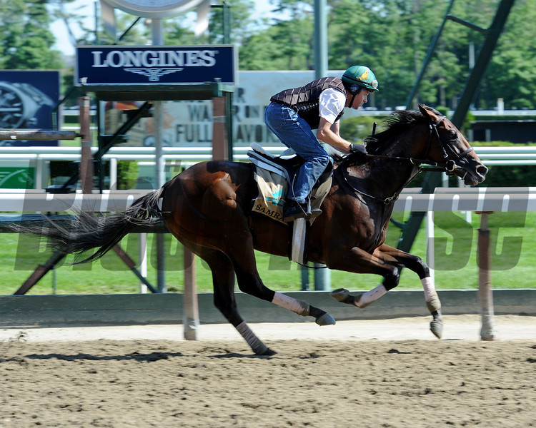 Samraat preps for the Belmont Stakes.<br /> Coglianese Photos/Chelsea Durand