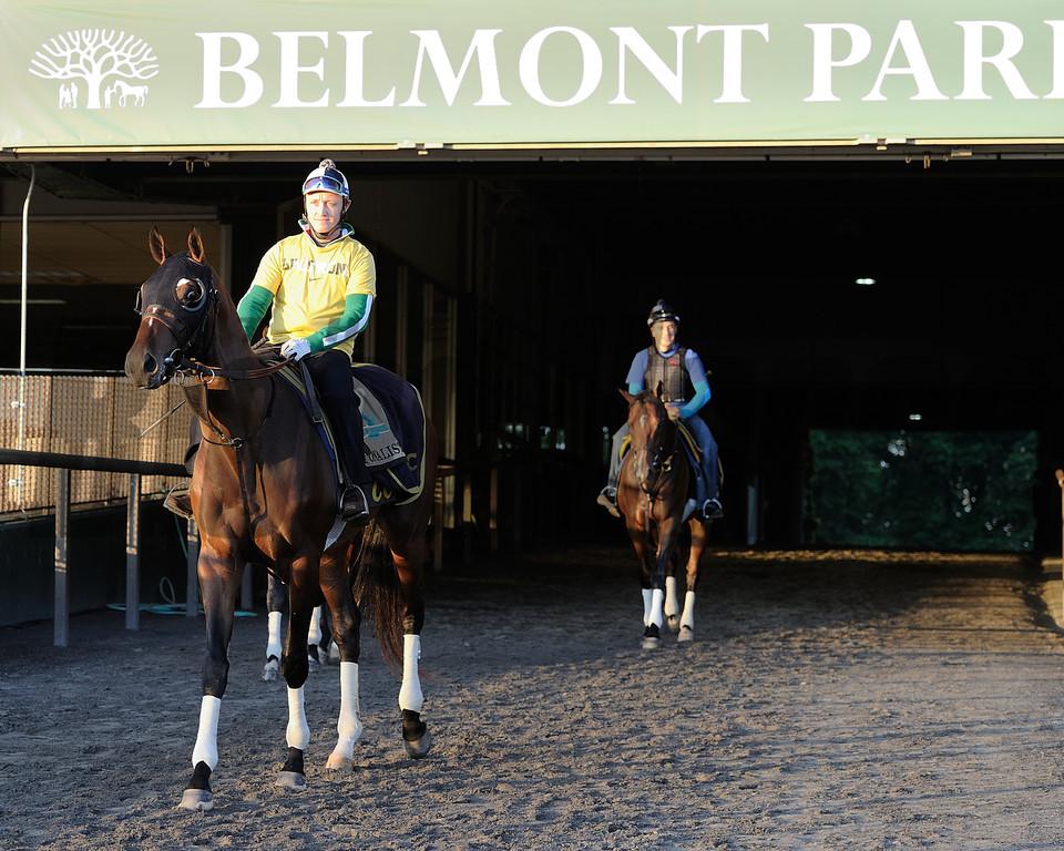 Tonalist at Belmont Park May 25<br /> Coglianese Photos/Susie Raisher