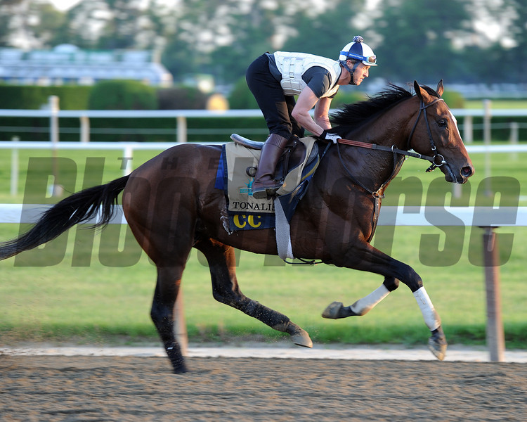 Tonalist at Belmont Park May 27, 2014<br /> Coglianese Photos/Susie Raisher