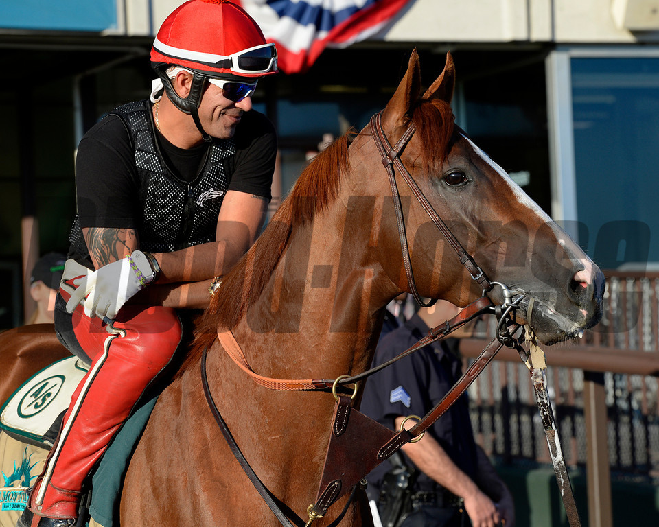 Caption: California Chrome waits in tunnel, looks around before going on track<br /> Belmont and undercard works on June 6, 2014, at Belmont Park in Elmont, N.Y. Willie Delgado up.<br /> FriOrigs1 image216<br /> Photo by Anne M. Eberhardt