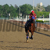 Social Inclusion at Belmont Park May 27, 2014<br /> Coglianese Photos/Lauren King