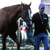 California Chrome at Belmont Park 6/1/2014<br /> Coglianese Photos/Susie Raisher