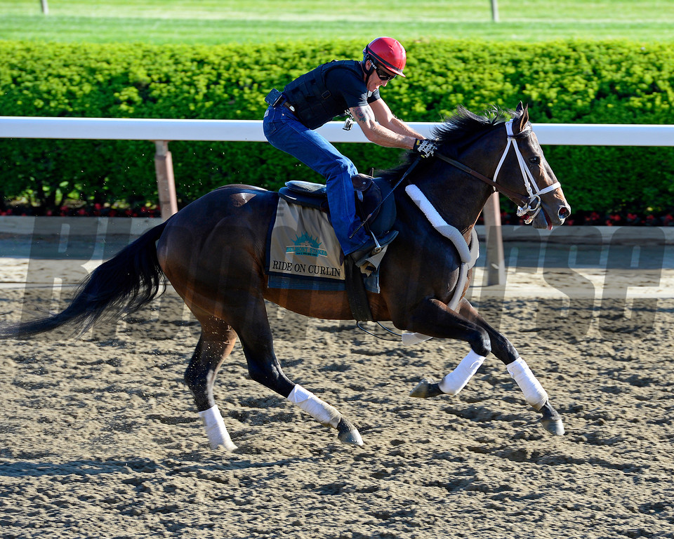 Caption: Ride On Curlin<br /> Belmont and undercard works on June 6, 2014, at Belmont Park in Elmont, N.Y.<br /> FriOrigs1 image305<br /> Photo by Anne M. Eberhardt