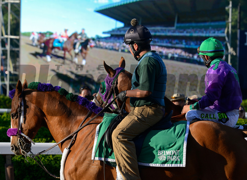 Caption: California Chrome with Victor Espinoza on way to post with matrix board behind them.<br /> wins the Belmont Stakes (gr. I) on June 7, 2014, at Belmont Park in Elmont, N.Y.<br /> 11-Belmont1 image954<br /> Photo by Anne M. Eberhardt