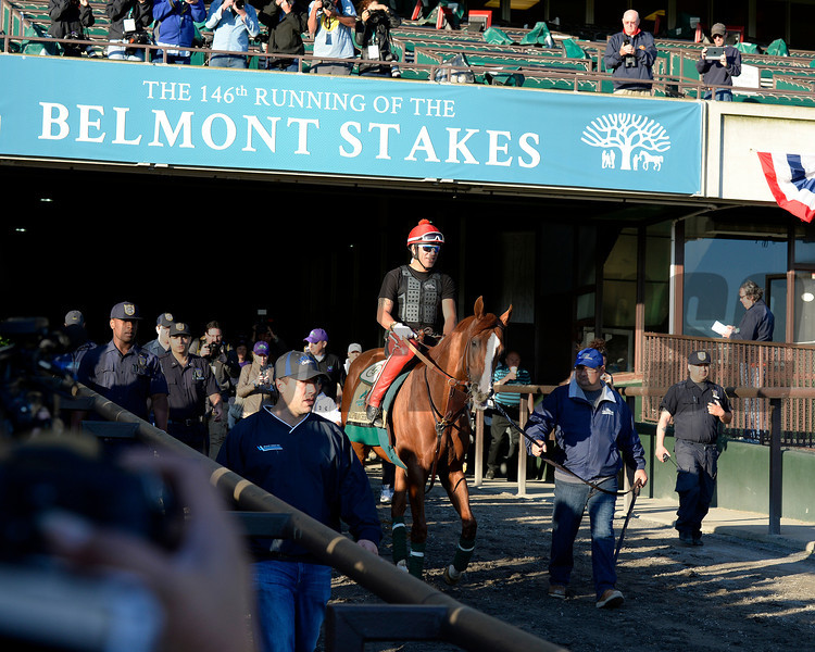Caption: Alan Sherman walks California Chrome to the track through the tunnel.<br /> Belmont and undercard works on June 6, 2014, at Belmont Park in Elmont, N.Y.<br /> FriOrigs1 image165<br /> Photo by Anne M. Eberhardt