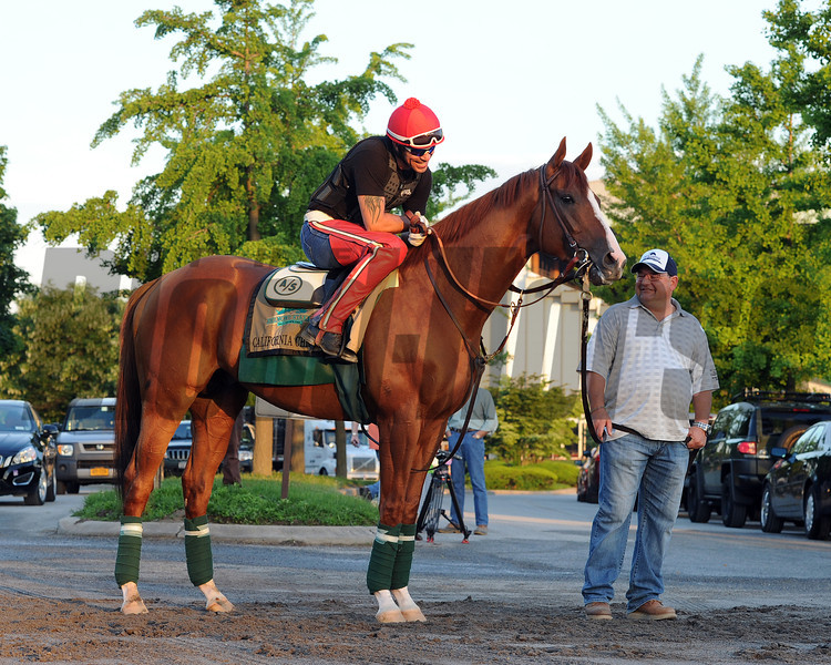 California Chrome at Belmont Park May 27, 2014<br /> Coglianese Photos/Susie Raisher