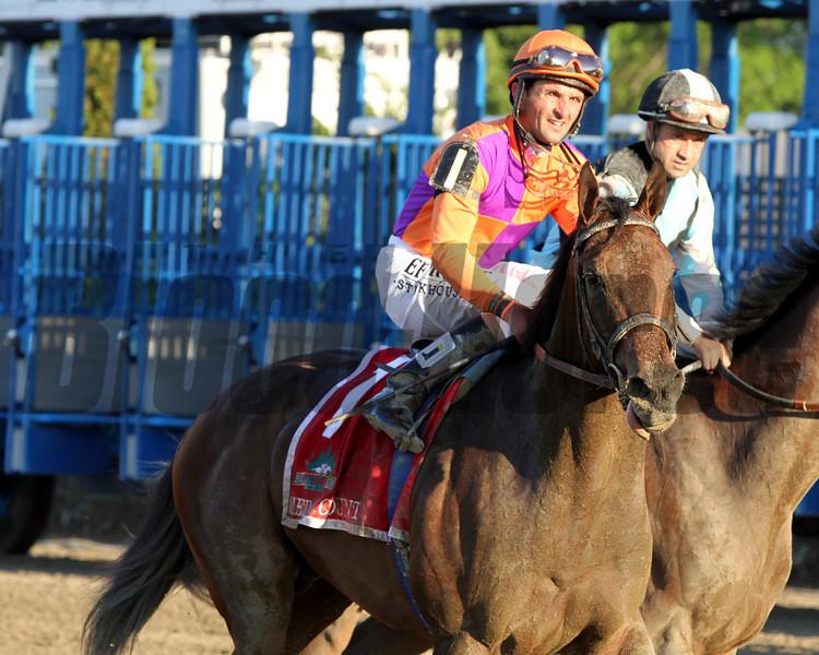 Medal Count Robby Albarado Belmont Stakes