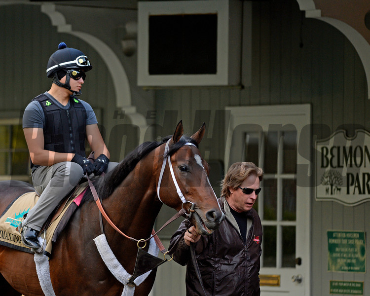 Caption: Dallas Stewart leads Commanding Curve into paddock<br /> Belmont and undercard works on June 3, 2014, at Belmont Park in Elmont, N.Y.<br /> TuesOrigs1  image864<br /> Photo by Anne M. Eberhardt