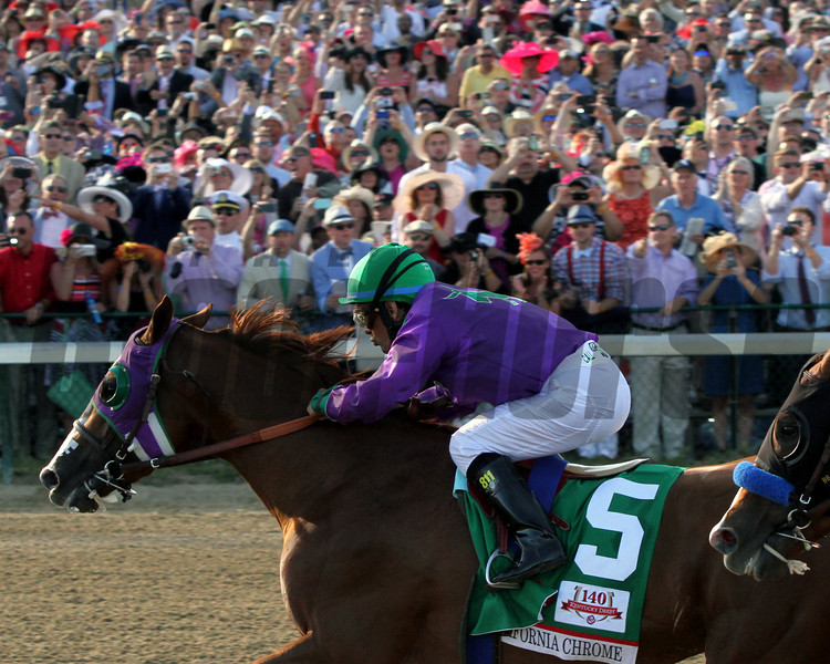 California Chrome Churchill Downs Kentuckhy Derby 140 Chad B. Harmon