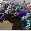 California Chrome Churchill Downs Kentucky Derby 140 Chad B. Harmon