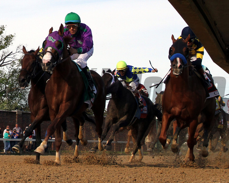 California Chrome Final Turn Remote Kentucky Derby 140 Chad B. Harmon