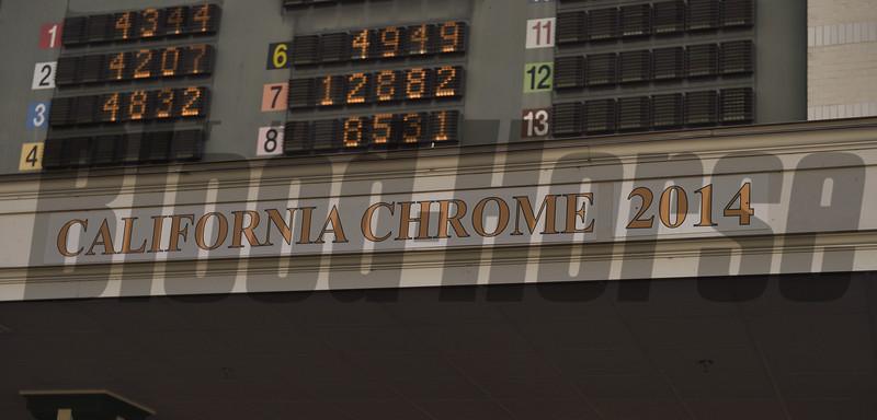 California Chrome