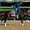 Caption: Got Lucky with Amy Mulen<br /> Kentucky Derby contenders in training at the Churchill Downs in Louisville, Ky., on April 19, 2014.<br /> KentuckyDerby 1Works4_23 image067<br /> Photo by Anne M. Eberhardt