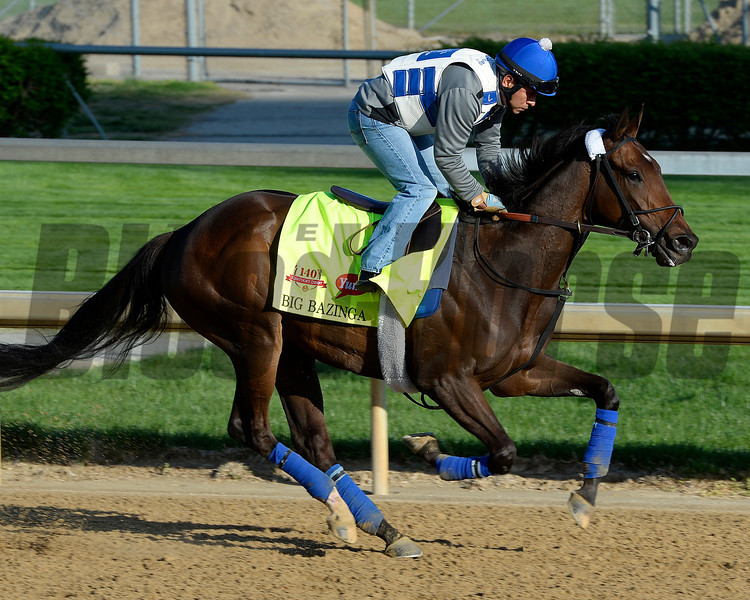 Caption: Big Bazinga<br /> Kentucky Derby contenders in training at the Churchill Downs in Louisville, Ky., on April 19, 2014.<br /> KentuckyDerby 1Works4_23 image095<br /> Photo by Anne M. Eberhardt