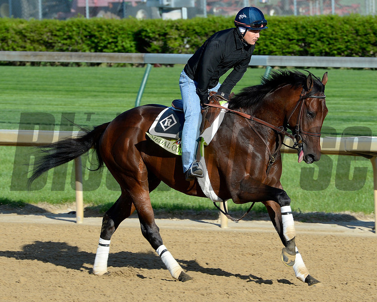 Caption: Medal Count with Faustino Aguilar<br /> Kentucky Derby contenders in training at the Churchill Downs in Louisville, Ky., on April 19, 2014.<br /> KentuckyDerby 2Works4_23 image225<br /> Photo by Anne M. Eberhardt