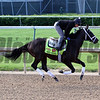 Vinceremos Churchill Downs Chad B. Harmon
