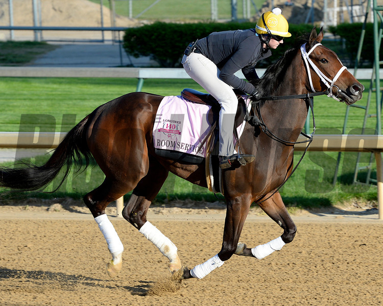 Caption:Room Service<br /> Kentucky Derby contenders in training at the Churchill Downs in Louisville, Ky., on April 19, 2014.<br /> KentuckyDerby 1Works4_23 image8000<br /> Photo by Anne M. Eberhardt