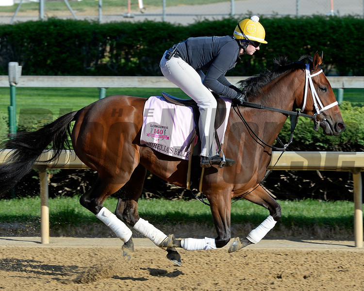 Caption: Aurelia's Belle<br /> Kentucky Derby contenders in training at the Churchill Downs in Louisville, Ky., on April 19, 2014.<br /> KentuckyDerby 2Works4_23 image251<br /> Photo by Anne M. Eberhardt