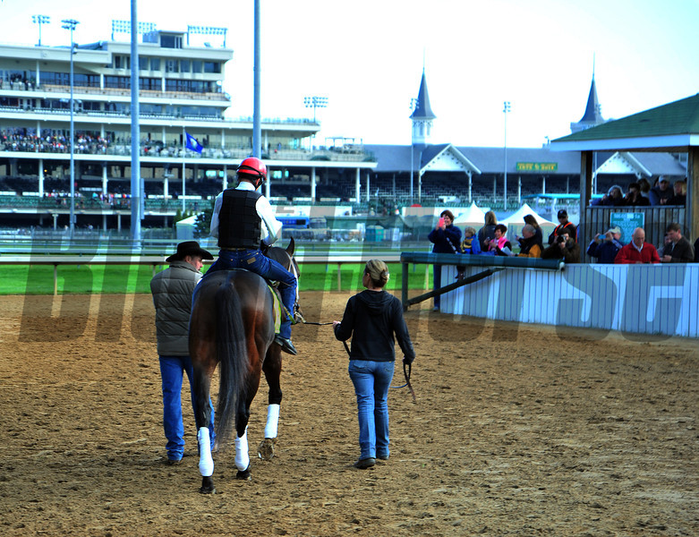 Ride On Curlin